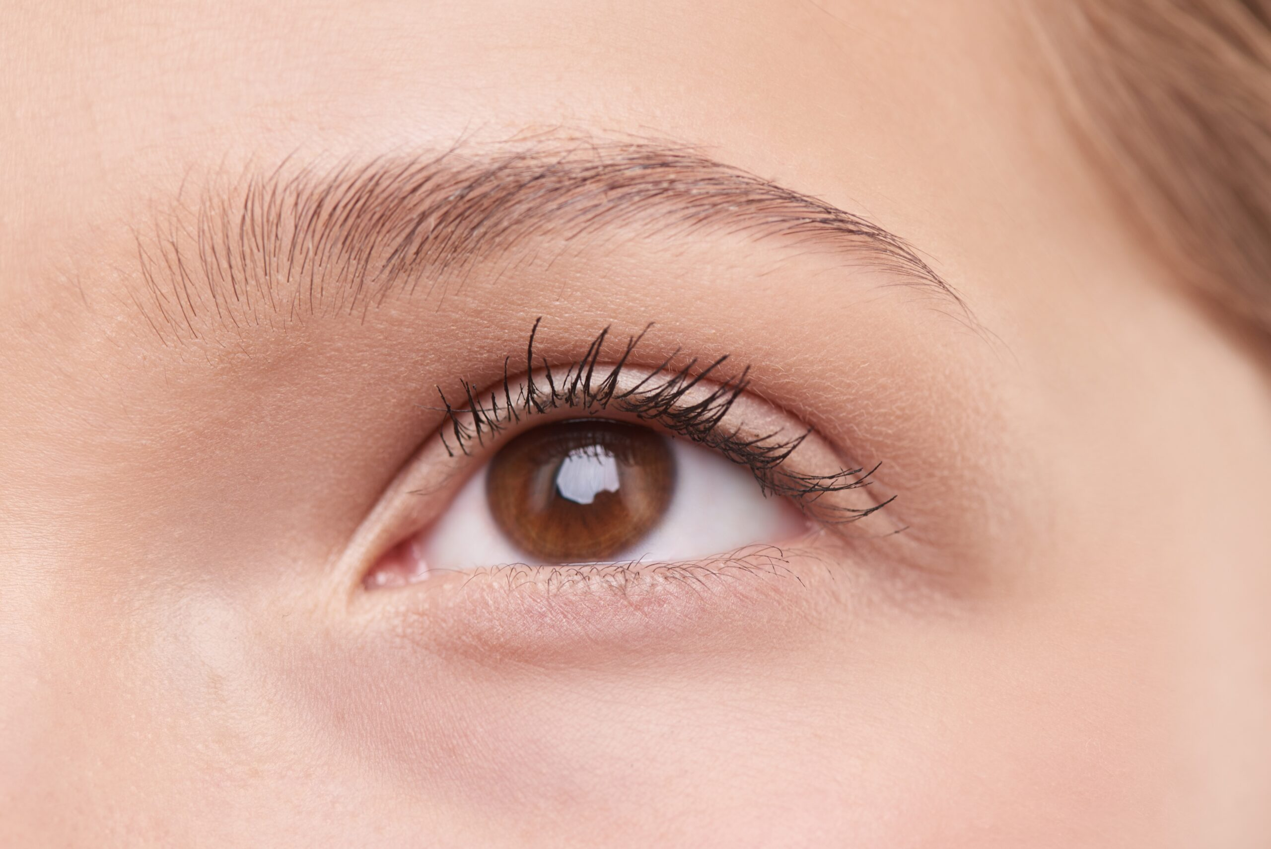 Eyebrows - Aesthetic augmentation & Restoration